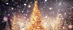 Free Christmas Facebook Covers for Timeline, Beautiful Christmas Season FB Covers for Facebook