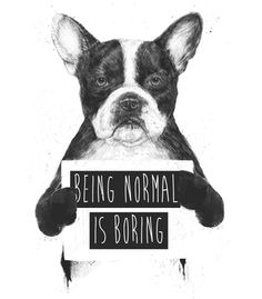 Vandal - Being normal is boring by Balazs Solti