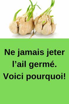 Ne jamais jeter l'ail germé. Voici pourquoi! #jeter #l'ail #germé