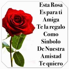 Frases para tu Muro: Esta Rosa es para ti