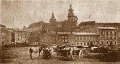 Wawel z Placu na Groblach. Fotografia