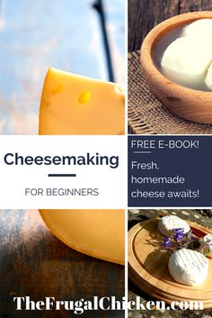 Have you always wanted to make fresh, organic cheeses but thought it was too hard? I'm here to tell you it's so simple you won't believe it. I show you how to do it, what you'll need, and exactly where to get it. Delicious freedom awaits! FromFrugalChicken