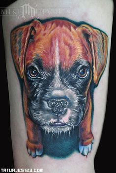 Did this tattoo in Australia at the Surf-Ink convention.Done on the inner bicep. Boxer Dog Tattoo, Dog Tattoos, Animal Tattoos, Turtle Tattoos, Dog Portrait Tattoo, Boxer Dogs, Boxers, Memorial Tattoos, Your Spirit Animal