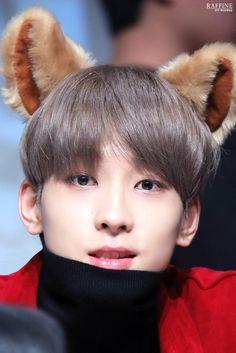 [✔] Rules from My Husband - Meanie Couple Seventeen Memes, Seventeen Wonwoo, Mingyu Wonwoo, Seungkwan, Vernon, K Pop, Choi Hansol, Won Woo, Joshua Hong