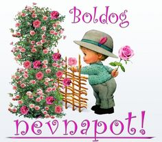 Névnap - jolka.qwqw.hu Name Day, Baseball Hats, Geek Stuff, Greeting Cards, Birthday, Flowers, Google, Geek Things, Baseball Caps