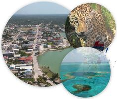 Country Information, Teaching English, Belize, Airplane View, Certificate