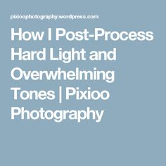 How I Post-Process Hard Light and Overwhelming Tones | Pixioo Photography