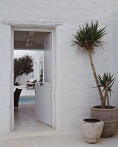 Dutch door of a whitewashed island house where stairs and earthen jars are laden with fuchsia bougainvillea - all under the deep blue sky filled with Mediterranean sun and the endless blue of Grecian waters.
