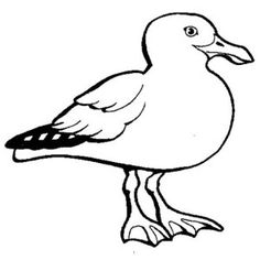 seagull sleeping coloring page kids play color
