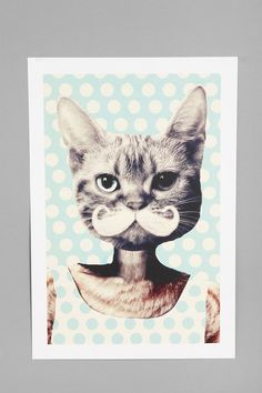 Zumzzet For Kitten Art Print - urban outfitters. goodness i want this for my room now please. Crazy Cat Lady, Crazy Cats, Urban Outfitters, Animal Art Prints, Thing 1, Funny Art, Funny Pics, Boxer, Diy