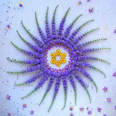 flower-mandalas-kathy-klein-2
