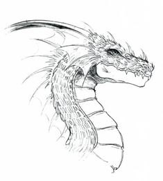 Cool Sketches, Drawing Sketches, Pencil Drawings, Realistic Dragon Drawing, Dragon Sketch, Cool Dragons, Animal Jam, Dragon Eye, Colorful Drawings