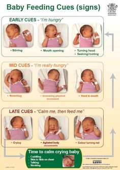 Baby feeding cues and how to know when your baby is hungry from KEMH Health
