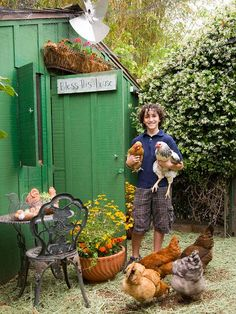 Is this the next step? Raising chickens is no longer for the rural farmer. Hobby farming within the boundaries of a residential lot is all the craze, making your morning omelet taste so much better with fresh eggs from the backyard. Most chicken coops take up less room than a toolshed, and although raising chickens may seem overwhelming, daily tasks are easy enough for teens to complete