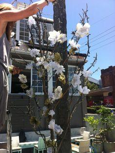 Moorish Blue : shisha garden bar in full bloom :