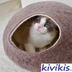 Cat bed, house, cave, pet bed, nap cocoon from 100% natural sheep  wool. Color sand brown.