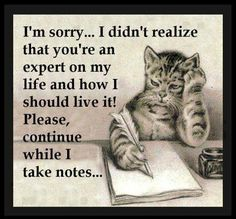 I didn't realize that you're an expert on my life and how I should live it! Please, continue while I take notes. yrs old and still be told what to do by in laws who think they know who I am) Sarcastic Quotes, Funny Quotes, Bitch Quotes, Quotable Quotes, True Quotes, Quotes Quotes, Crazy Quotes, Friend Quotes, Hypocrite Quotes