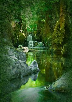 The Fairy Glen, Conwy River near Betws-y-Coed, North Wales #beautiful sight