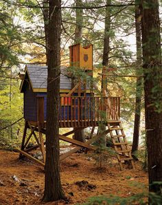 Classic treehouse with a colorful twist!