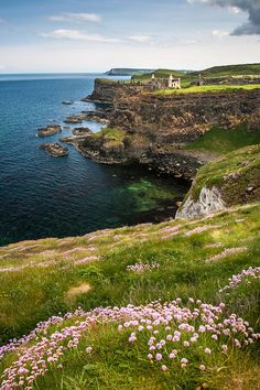 Dunluce Castle and Sea Cliffs of Northern Ireland in Spring