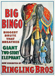 "New Ringling Bros Circus Poster ""Bingo the Elephant""- Vintage Reproduction Circa 1916 Poster Retro, Vintage Circus Posters, Carnival Posters, Vintage Advertisements, Vintage Ads, Vintage Images, Advertising Signs, Cirque Vintage, Ringling Brothers Circus"
