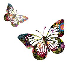Butterflies Vector PNG Picture