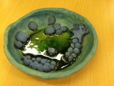 Pottery project inspired by rock pools