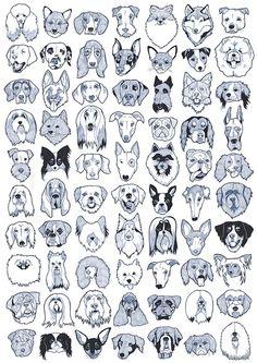 70 Caras de perros po EmilyMayIllustration
