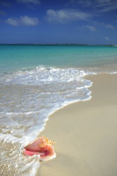 Stroll along the ocean's edge where crystal clear water meets powder soft sand.