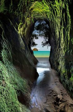 Beautiful places to travel Abel Tasman National Park in New Zealand Parc National, National Parks, Places To Travel, Places To See, Hidden Places, Abel Tasman National Park, Photos Voyages, New Zealand Travel, New Zealand Adventure