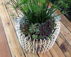 Take your succulent plants to an entirely new level with one of these easy and affordable IKEA hacks.