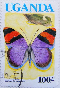 Postage Stamp of a drawing or painting of a purple, orange and black butterfly with its wings spread