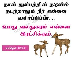 Bible Words Images, Tamil Bible Words, Jesus Photo, Christian Quotes, Verses, Christianity Quotes, Scriptures, Lyrics, Poems