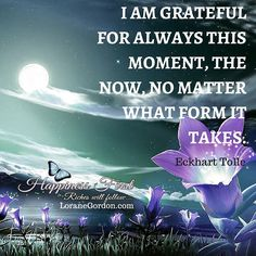 Gratitude like magic, transforms even what seems bad into good. Learn how to make 2015 your happiest year yet with my FREE book! Loranegordon.com/free-gifts #inspirationalquotes #inspired #inspirational #followforfollow #happiness #gratitude #lifestyle #life #inspired #lifequote #enlightenment #enlightened #lawofattraction #positivethinking #beautiful #instaquote #instagood