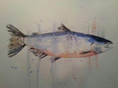 Zalm watercolor (25x35) 09/2014