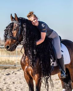 We Borrow Freedom In Riding A Horse . , horse training tips , polo horse photography , horse-rider , horse-riding Beautiful Horse Pictures, Beautiful Horses, Pretty Horses, Horse Braiding, Horse Girl Photography, Horse Videos, Draft Horses, Horse Breeds, Horse Care