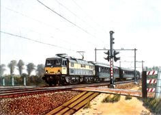 NS: Ex BR 1500 met een sneltrein. Electric Locomotive, Lady Diana, Planes, Dutch, Train, Image, Airplanes, Dutch Language, Princess Diana