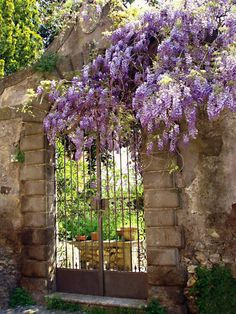 Ꮹℓყcɨŋє (Quaint Garden Gate in the ancient hilltop town of Soriano Nel Cimino, Tuscany, Italy)