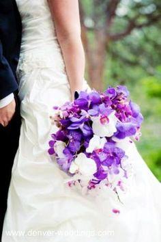 purple orchid bride bouquet