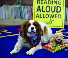 How Reading Aloud to Therapy Dogs Can Help Struggling Kids | MindShift | KQED News