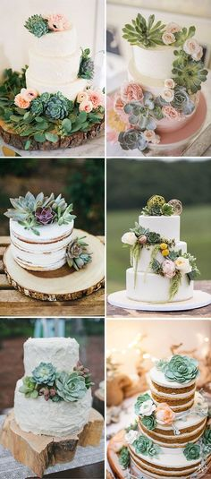 gorgeous succulent wedding cakes ideas