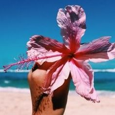 beach, flowers, and summer image Summer Sun, Summer Of Love, Summer Beach, Summer Vibes, Ocean Beach, Goddess Of The Sea, Dame Nature, I Need Vitamin Sea, Summer Goals