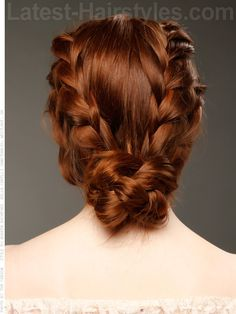 Modern Double Braid Hairstyle Back View