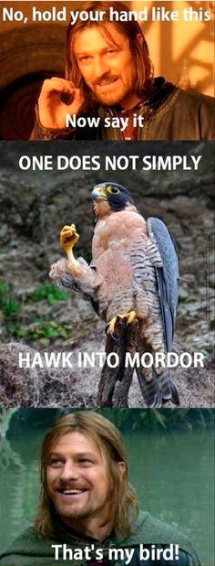 That's Boromirs bird