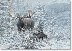 Moose painting by Ralph Oberg | Art - Wildlife - Deer | Pinterest ...