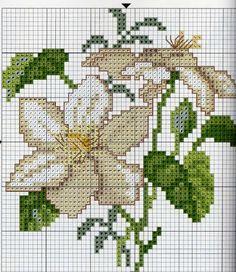 flores grandes - yasmine - Álbumes web de Picasa