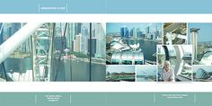 Singapore Flyer by Lynn Grieveson (The Lily Pad) using Sharpshooter album.