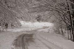Winter road 2015