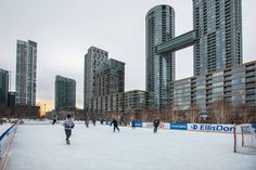 Toronto Views's albums Visit Toronto, Downtown Toronto, Toronto Winter, Outdoor Skating, Ice Rink, Winter Snow, Ice Skating, Cn Tower, Skate