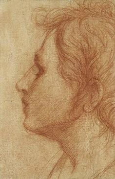 Andrea del Sarto (1486–1530), Head of a Youth in Profile, ca. 1522. Red chalk, 8 1/4 x 5 1/8 in. (21 x 13 cm). The Ashmolean Museum, Oxford; bequeathed by Dr. Gerhard Weiler, 1995 © Ashmolean Museum, University of Oxford: